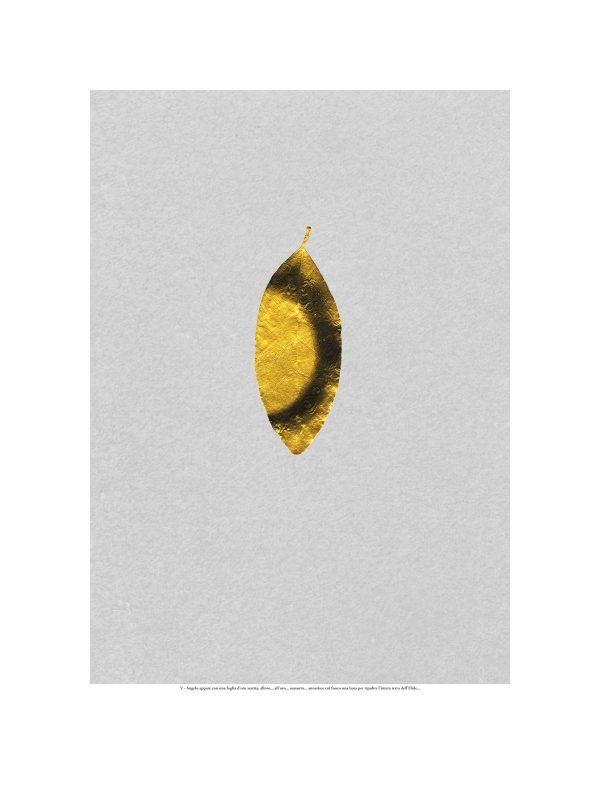 Pretolani-5-dodekathlos