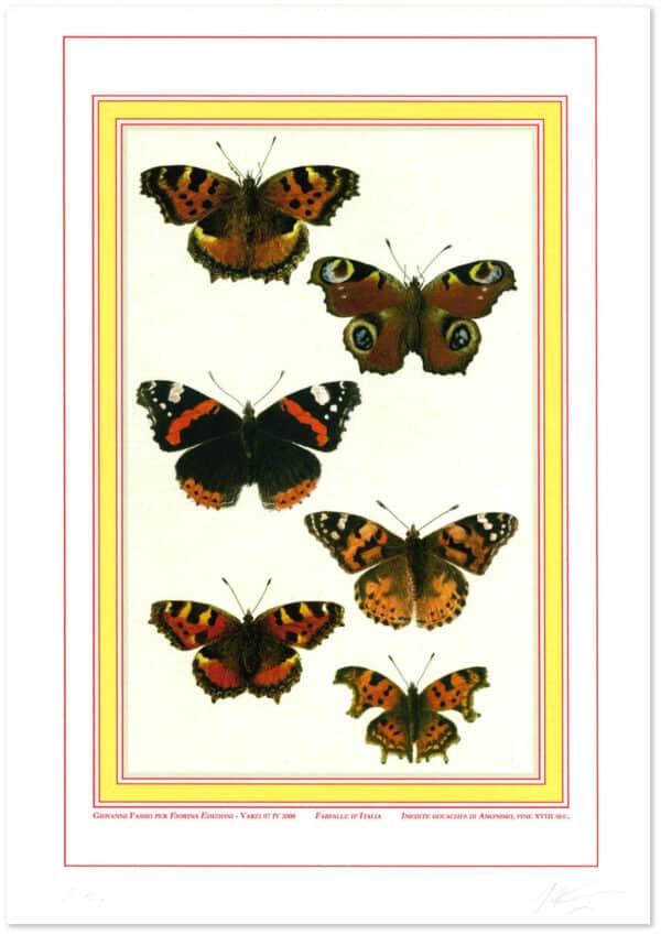 farfalle-italia-shadow.jpg