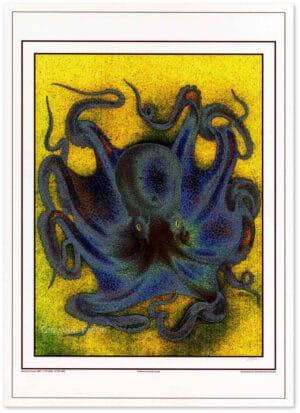 polpo-octopus-vulgaris-shadow.jpg