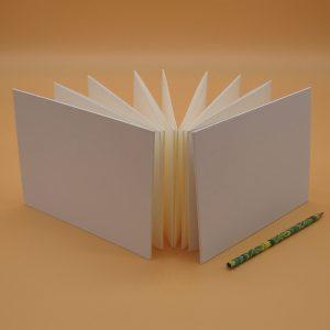1 10x15 fiorina edizioni